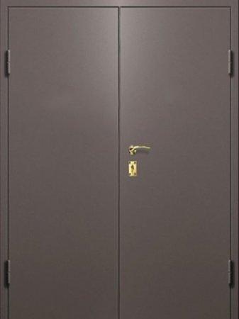 Двухлистовая металлическая дверь - 16-37