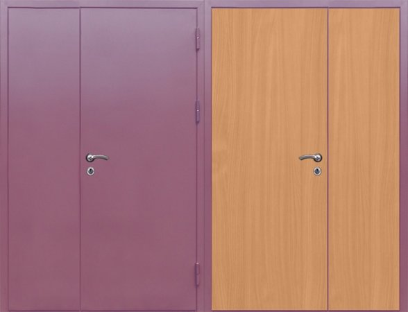 Двухлистовая металлическая дверь - 16-94