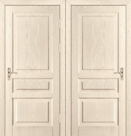 Двухлистовая металлическая дверь - 17-93