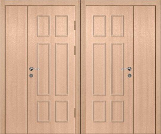 Двухлистовая металлическая дверь - 18-17